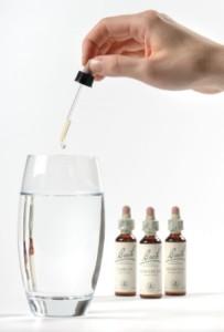 Bach virágterápia alkalmazása: pohár módszer