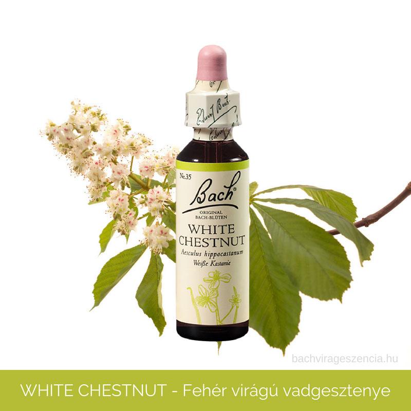 White Chestnut - Fehérvirágú vadgesztenye eredeti Bach-virágeszencia