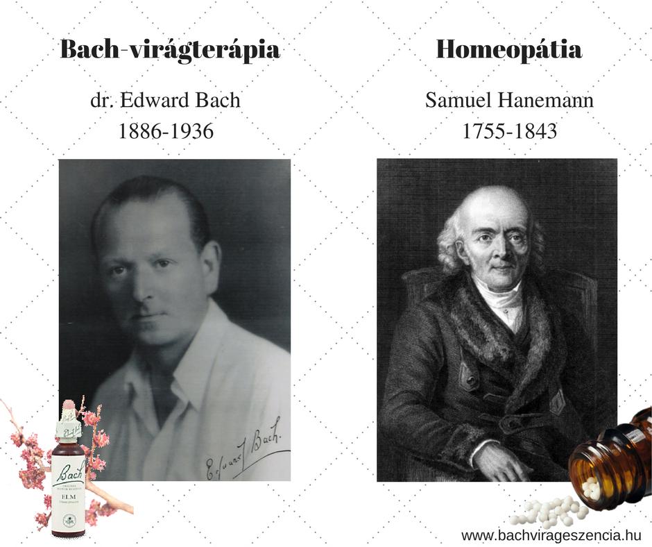 bach-hanemann-homeopatia-bach-virageszencia