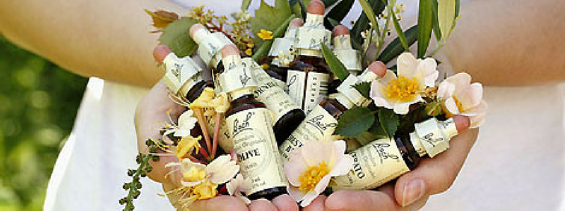 Újbuda EgészségPart bejegyzés cover képe