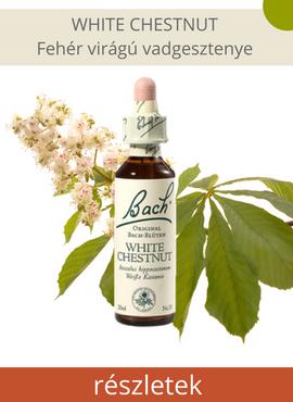 White Chestnut - Fehér virágú vadgesztenye az érdektelenség csoport Bach-virágeszenciája