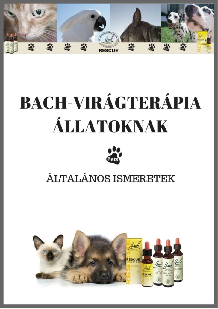 Bach-virágterápia állatoknak