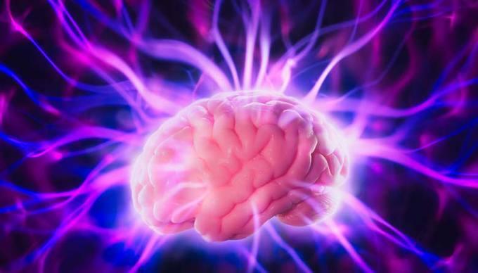 Az agyban az elutasítás a fizikai fajdalom helyén jelentkezik.