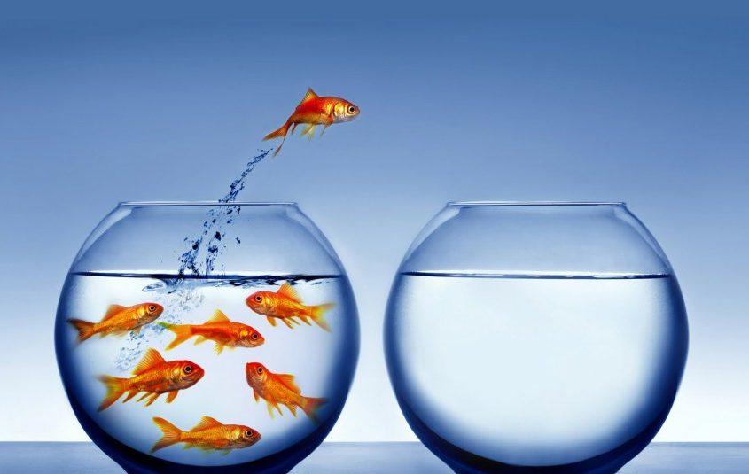 Változás sikert hozhat.