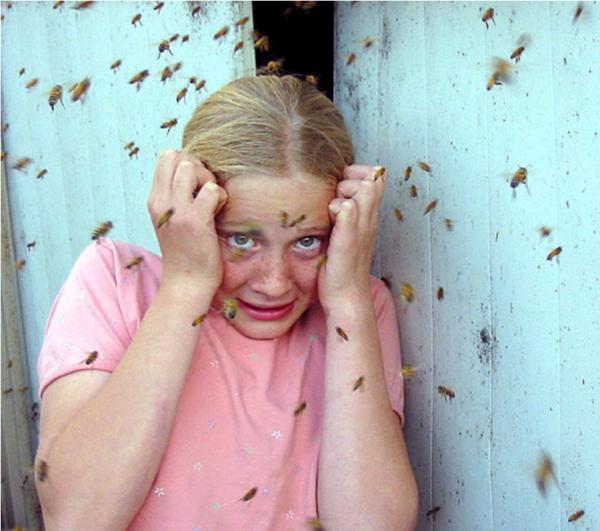 Félelem a méhektől.