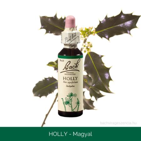 Holly -Magyal eredeti Bach-virágeszencia