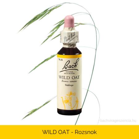 Wild Oat - Ágas rozsnok eredetei Bach-virágeszencia