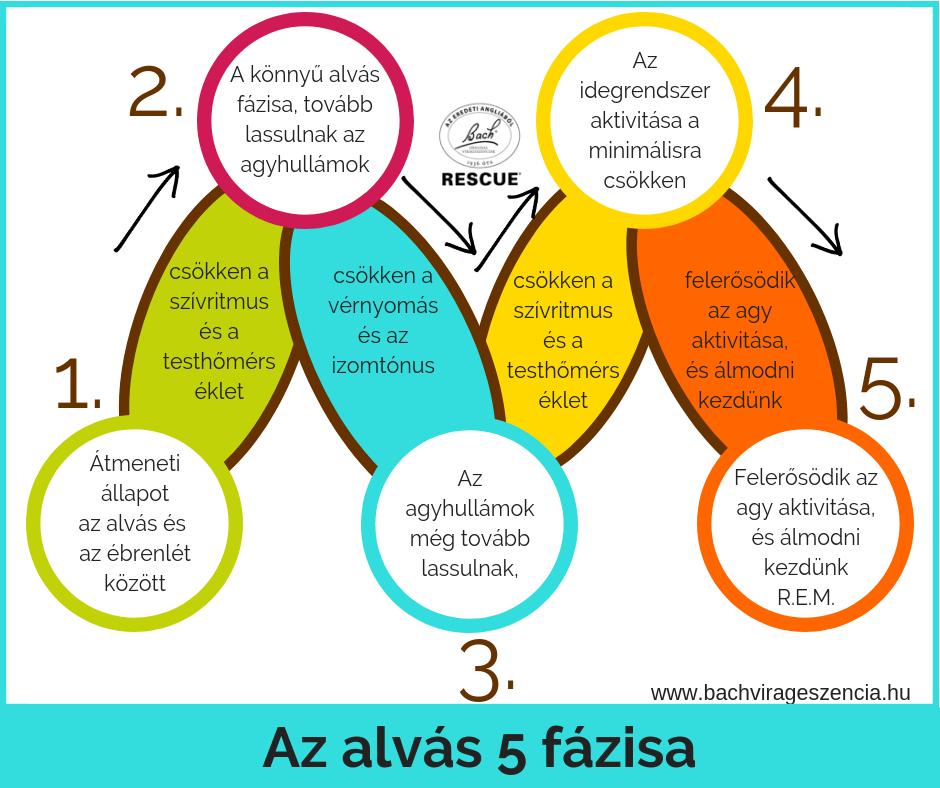 Az alvás öt fázisa